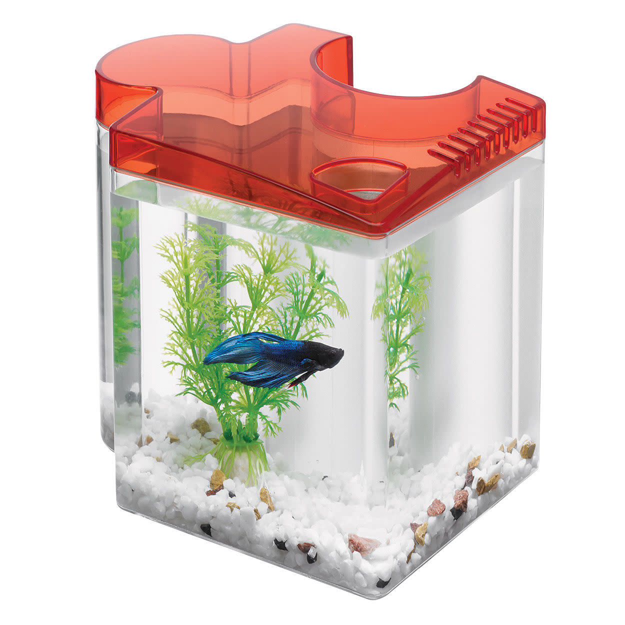 Aqueon Kit Betta Puzzle Red 0.5 Gallon-1