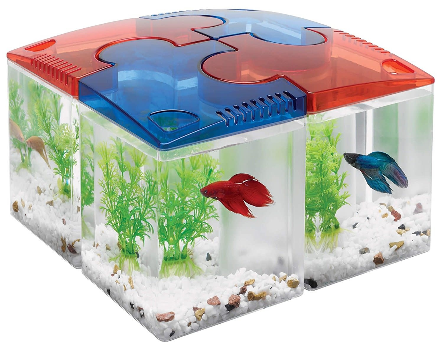 Aqueon Kit Betta Puzzle Red 0.5 Gallon-2