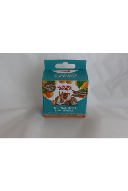 Living World Small Animal Mineral Block-Orange-40g