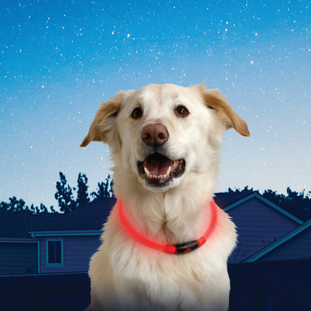 Nite Howl LED Safety Necklace Red-2
