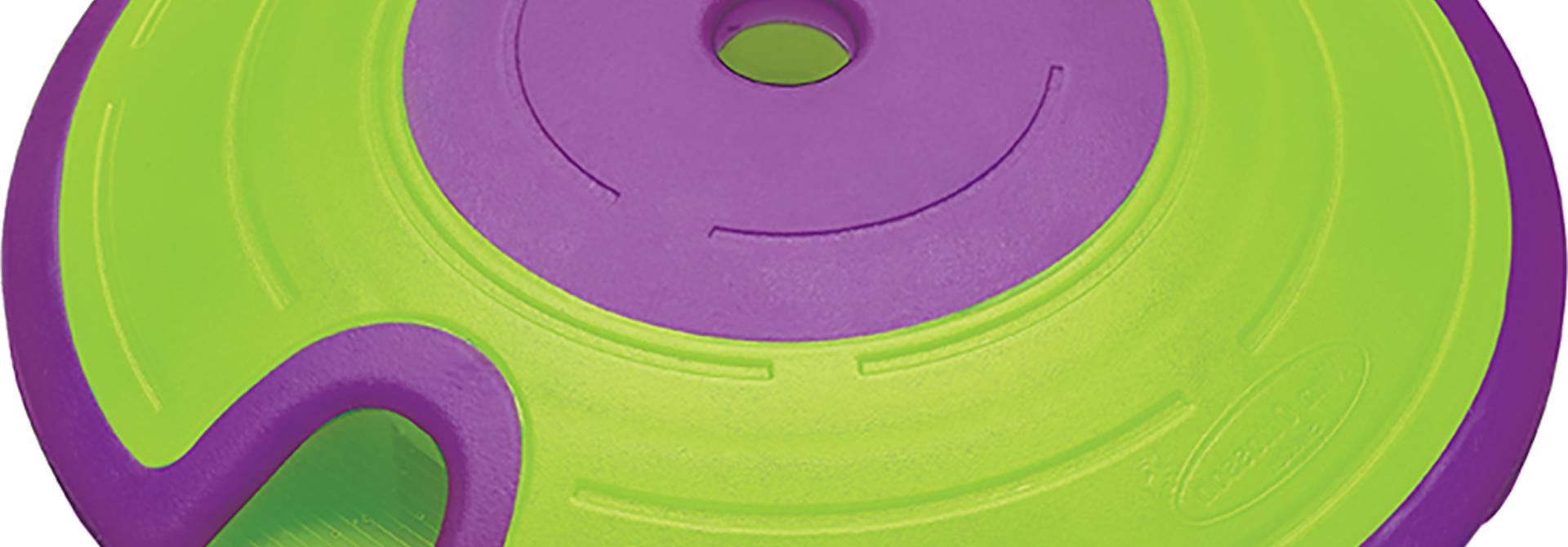 Treat Maze Green & Purple Puzzle