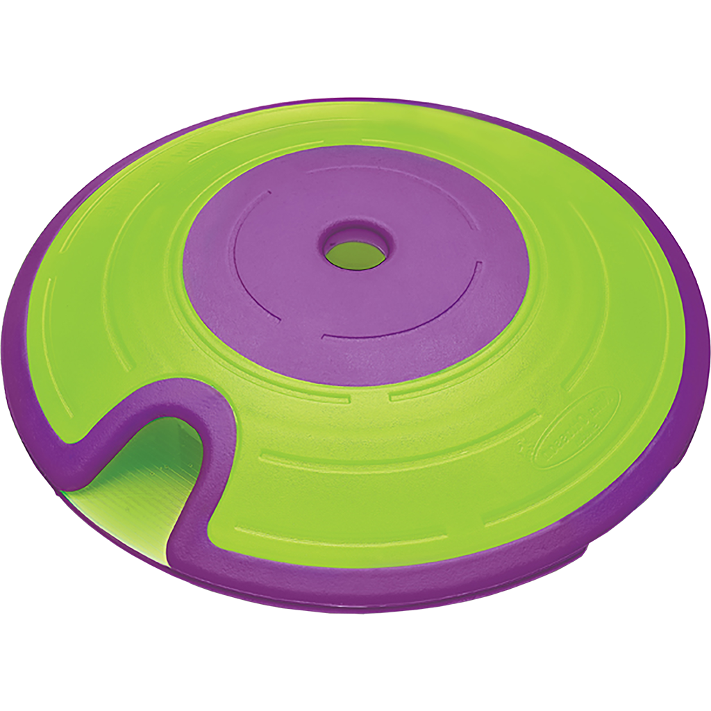 Treat Maze Green & Purple Puzzle-1