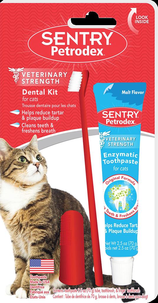 Dental Kit Cat-1