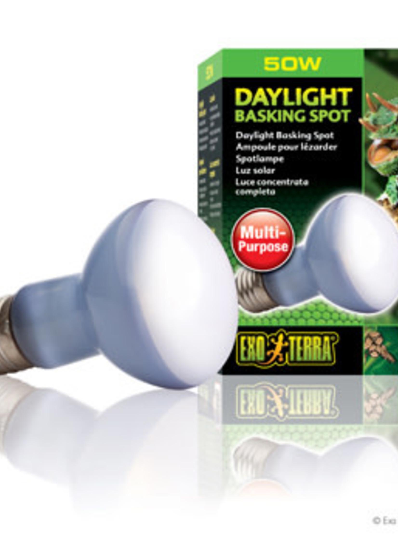 ET Daylight Basking Spot Lamp- R20/50W