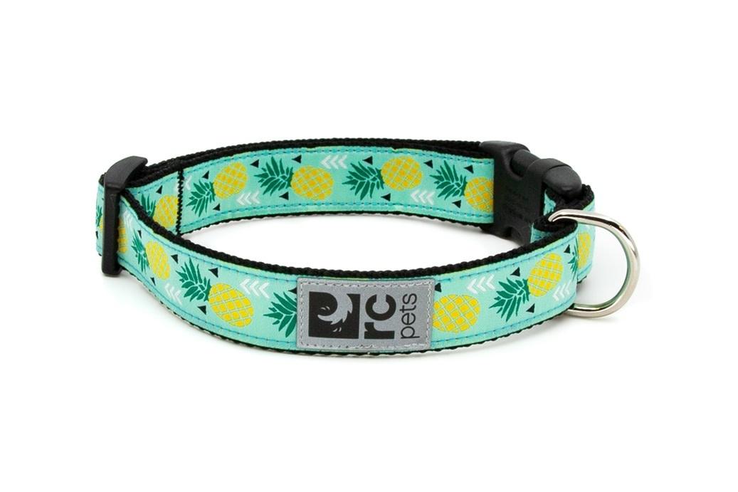 "Clip Collar Medium 1"" Pineapple Parade-1"