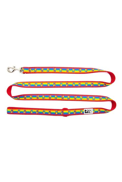 Leash 1x6 Rainbow Paws