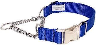 "3/4"" Wide  Martingale Style Nylon Dog Collar Royal Blue-1"