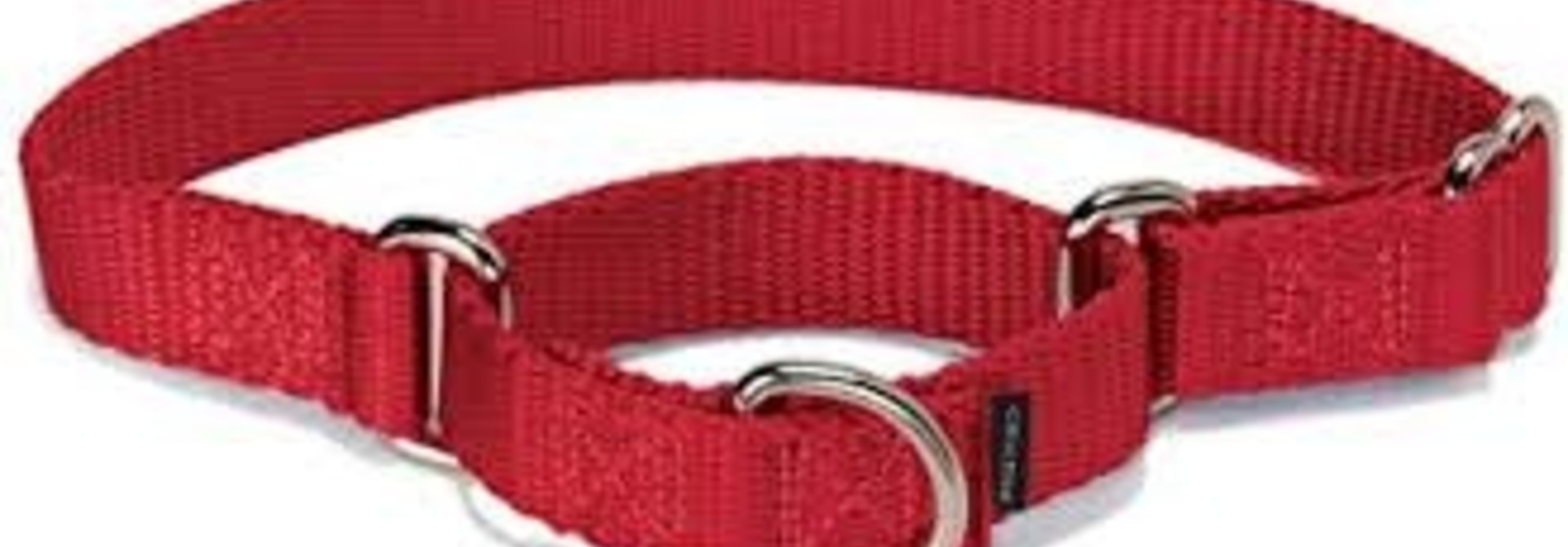 """1"""" Wide All-Webbing Martingale Style Nylon Dog Collar Red 30"""""""