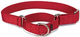 """1"""" Wide All-Webbing Martingale Style Nylon Dog Collar Red 30""""-1"""