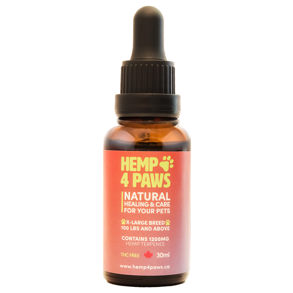 Hemp 4 Paws - XLarge Breed 1200mg-30ml-1