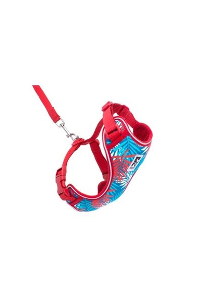 Adventure Kitty Harness Small Maldives