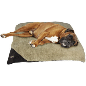AFP Lambswool Pillow Bed, Brown, 27x36, Medium-1