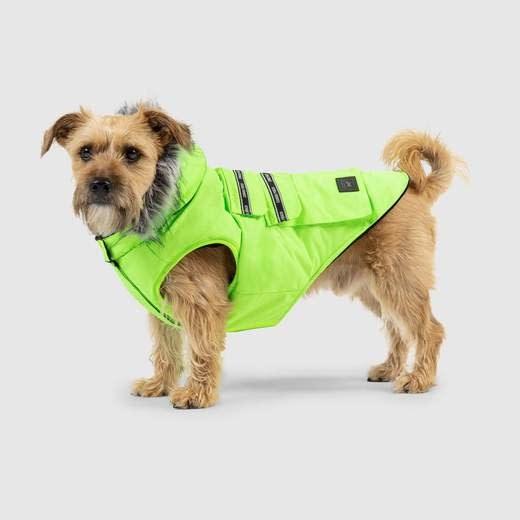 """Canada Pooch Explorer Jacket Neon Green 18""""-1"""