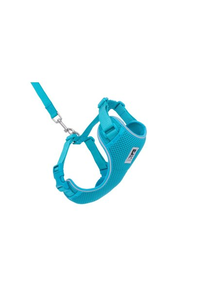 Adventure Kitty Harness Medium Teal
