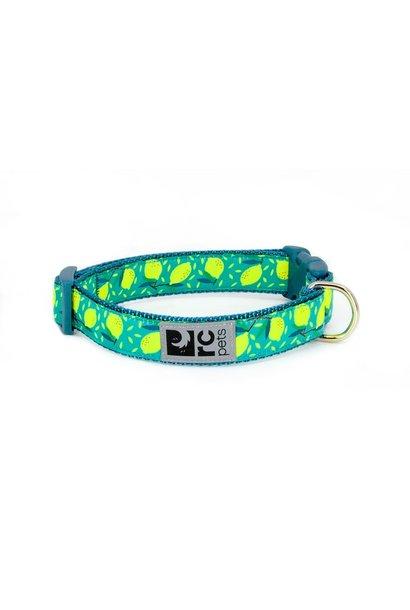 """Clip Collar Small 3/4"""" Bright Paisley"""