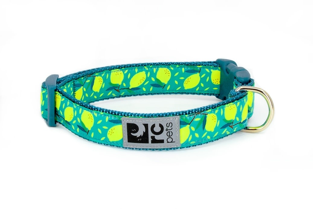 """Clip Collar Small 3/4"""" Bright Paisley-1"""