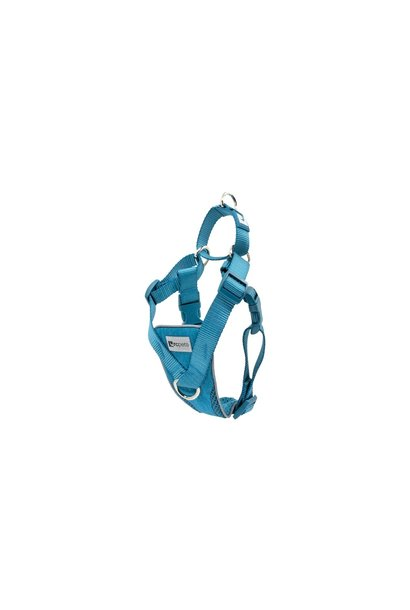 Tempo No Pull Harness M Heather Teal