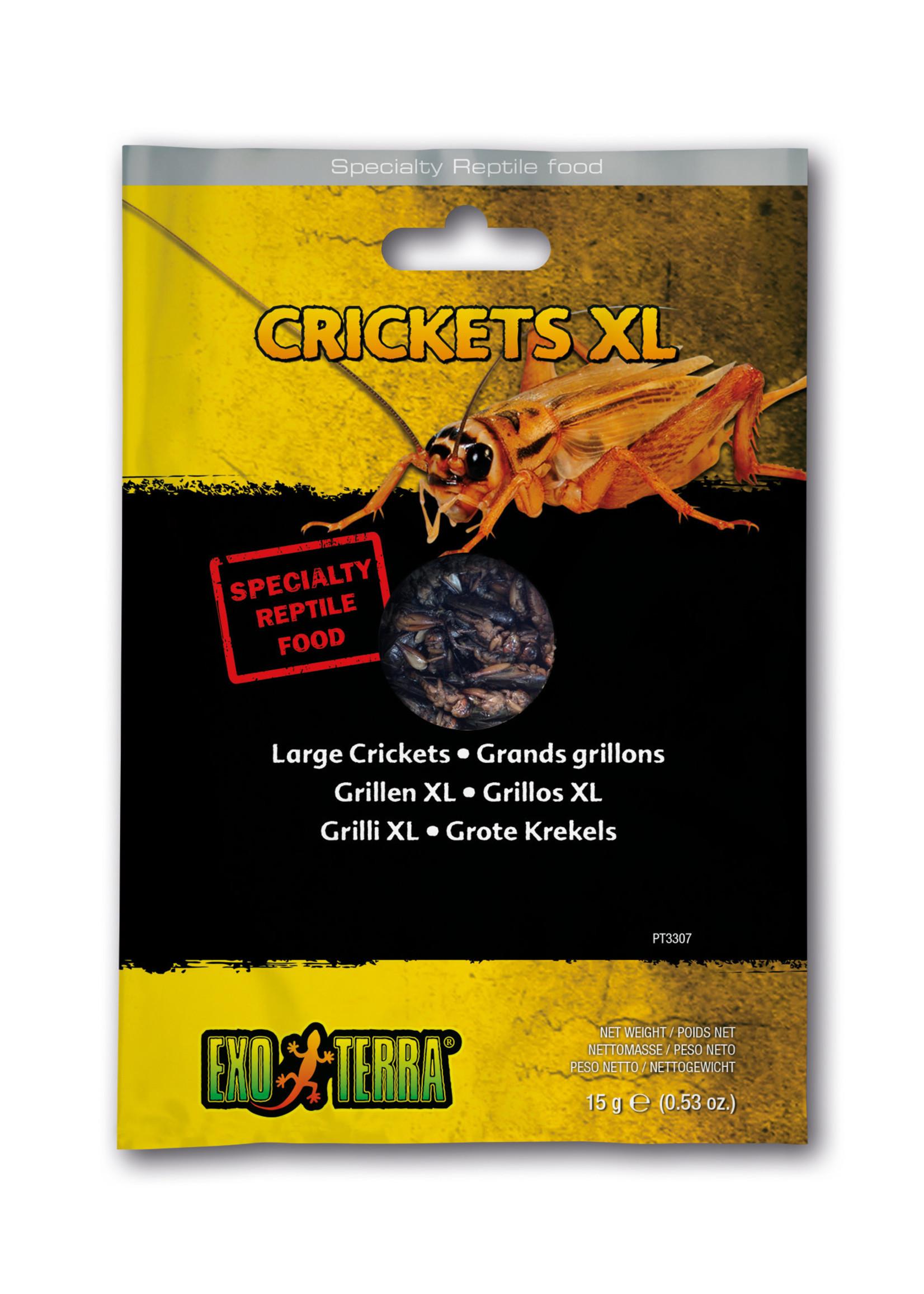 EX Reptile Food, Crickets XL ,15g