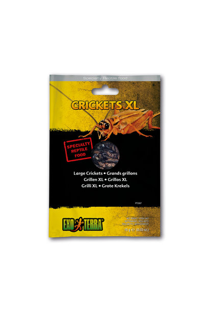 EX Reptile Food, Crickets XL ,15g