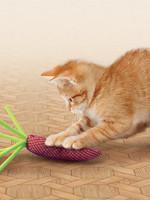 Kong Nibble Carrots - Catnip