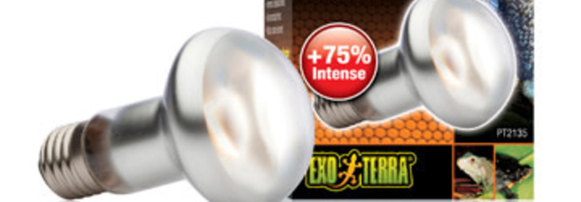 ET Intense Basking Spot - S20 / 50W-V