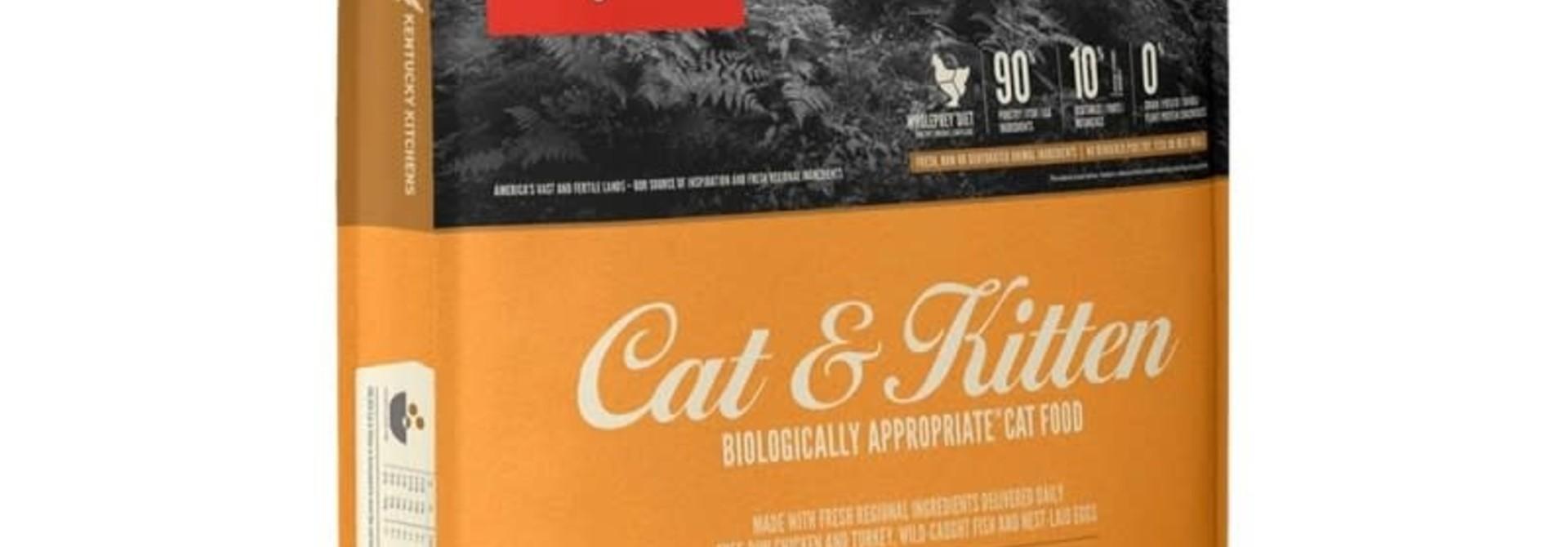 OR Cat & Kitten