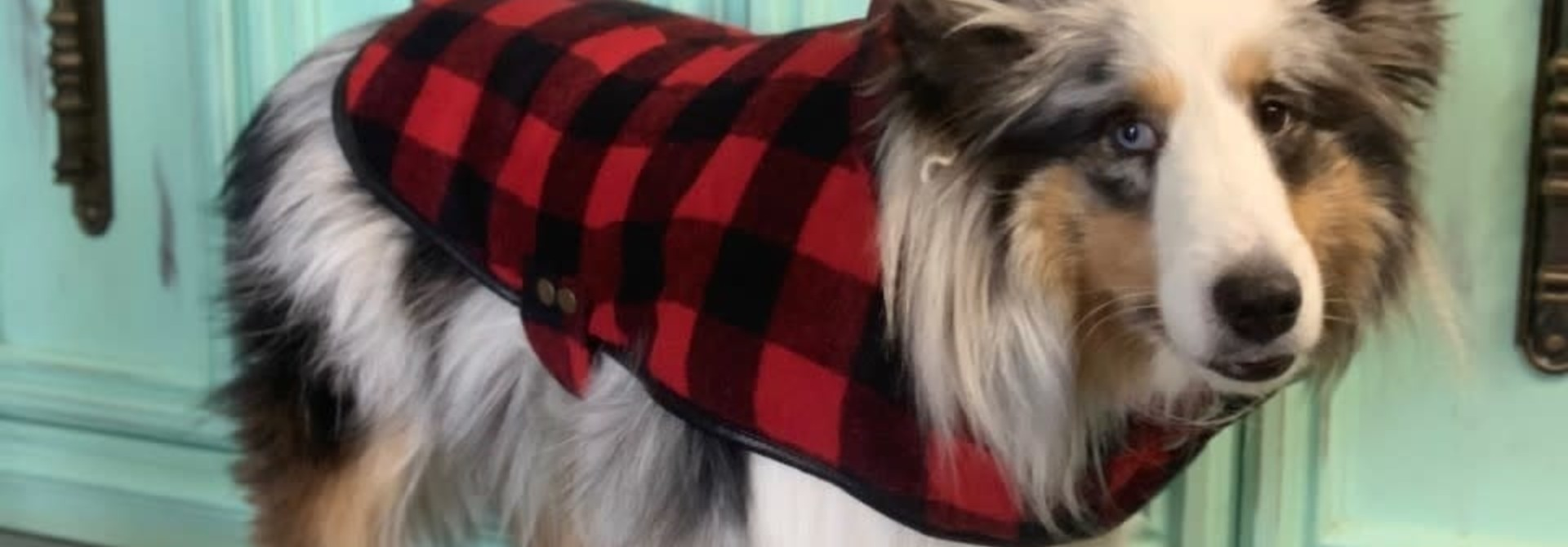Doggie-Q Red Lumberjacket