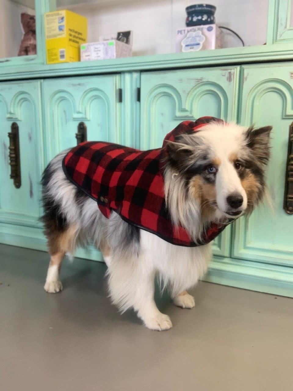 Doggie-Q Red Lumberjacket-2