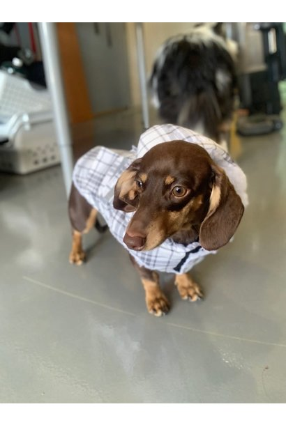 Doggie-Q White Plaid