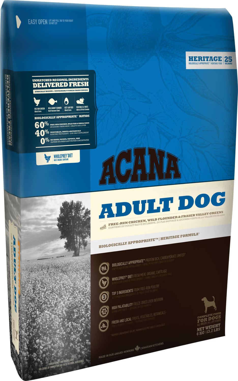 ACH Adult Dog-1