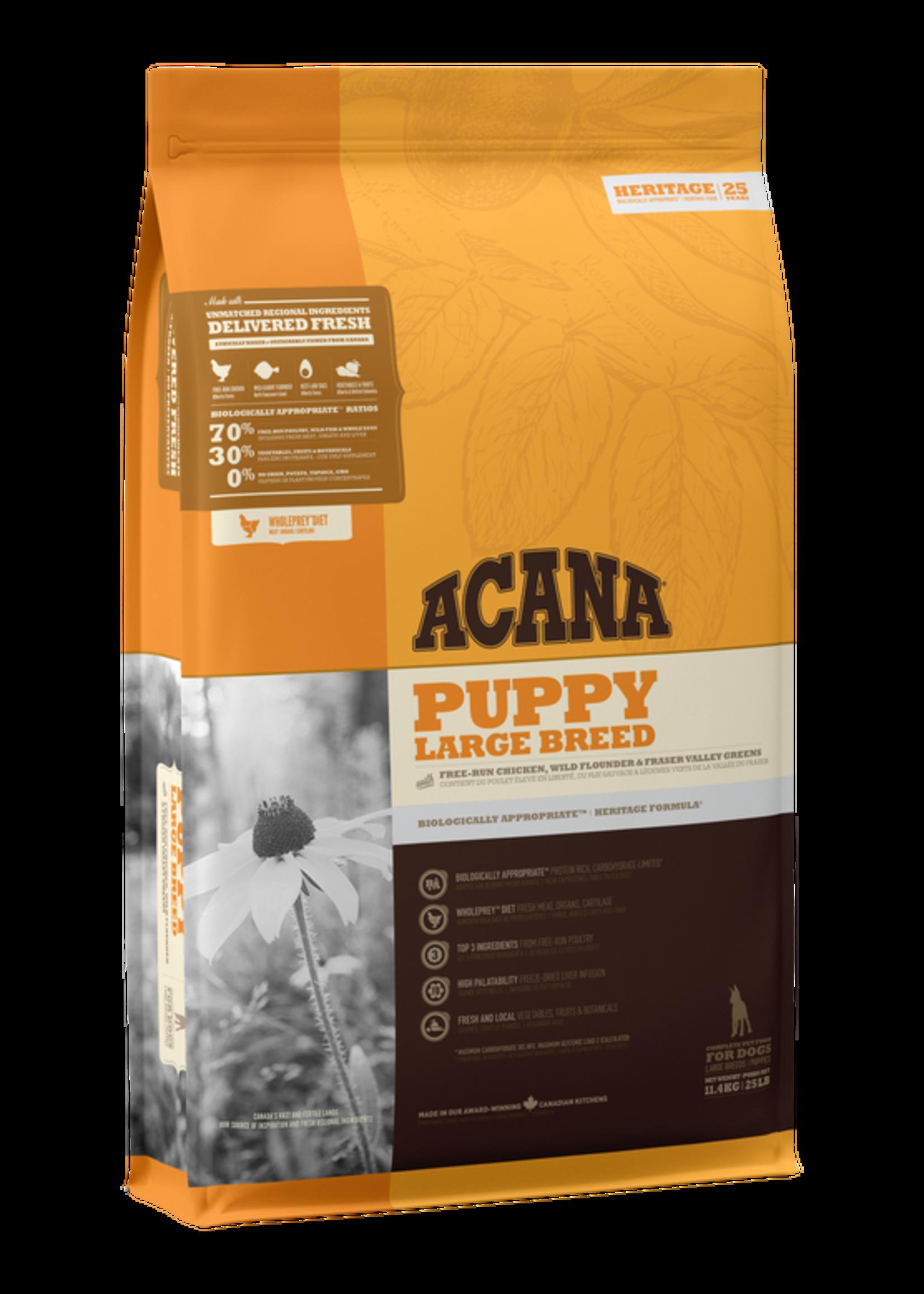 Acana Dog Acana - Large Breed Puppy