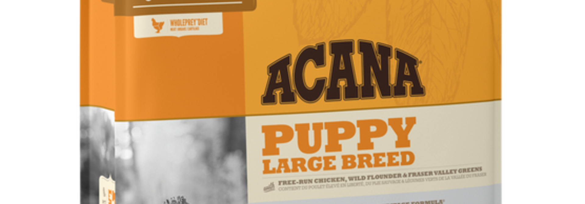 ACH Large Breed Puppy