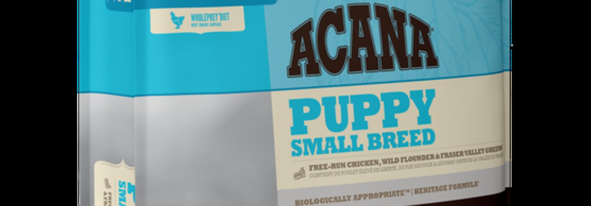 ACH Small Breed Puppy