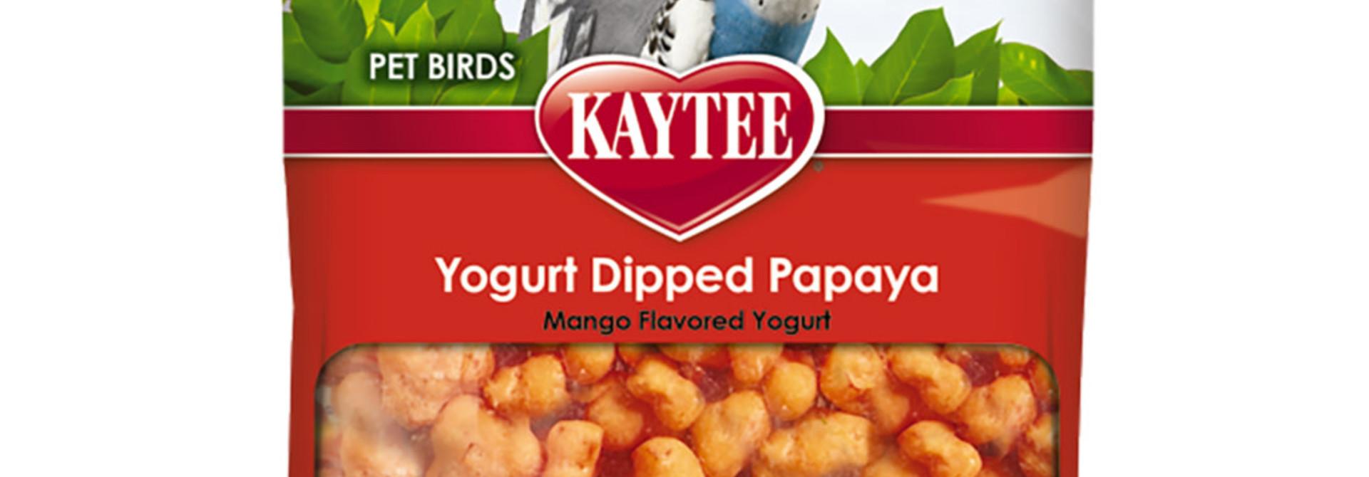 Fiesta Mango Yogurt Dipped Papaya Treats 2.5OZ