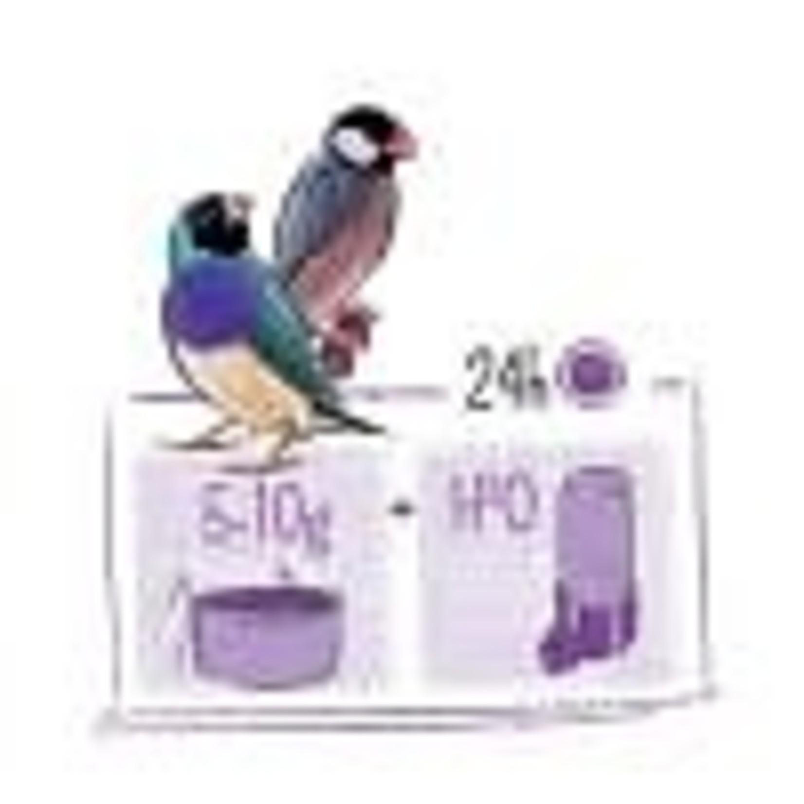 Witt Molen Tropical Bird Food 750gm