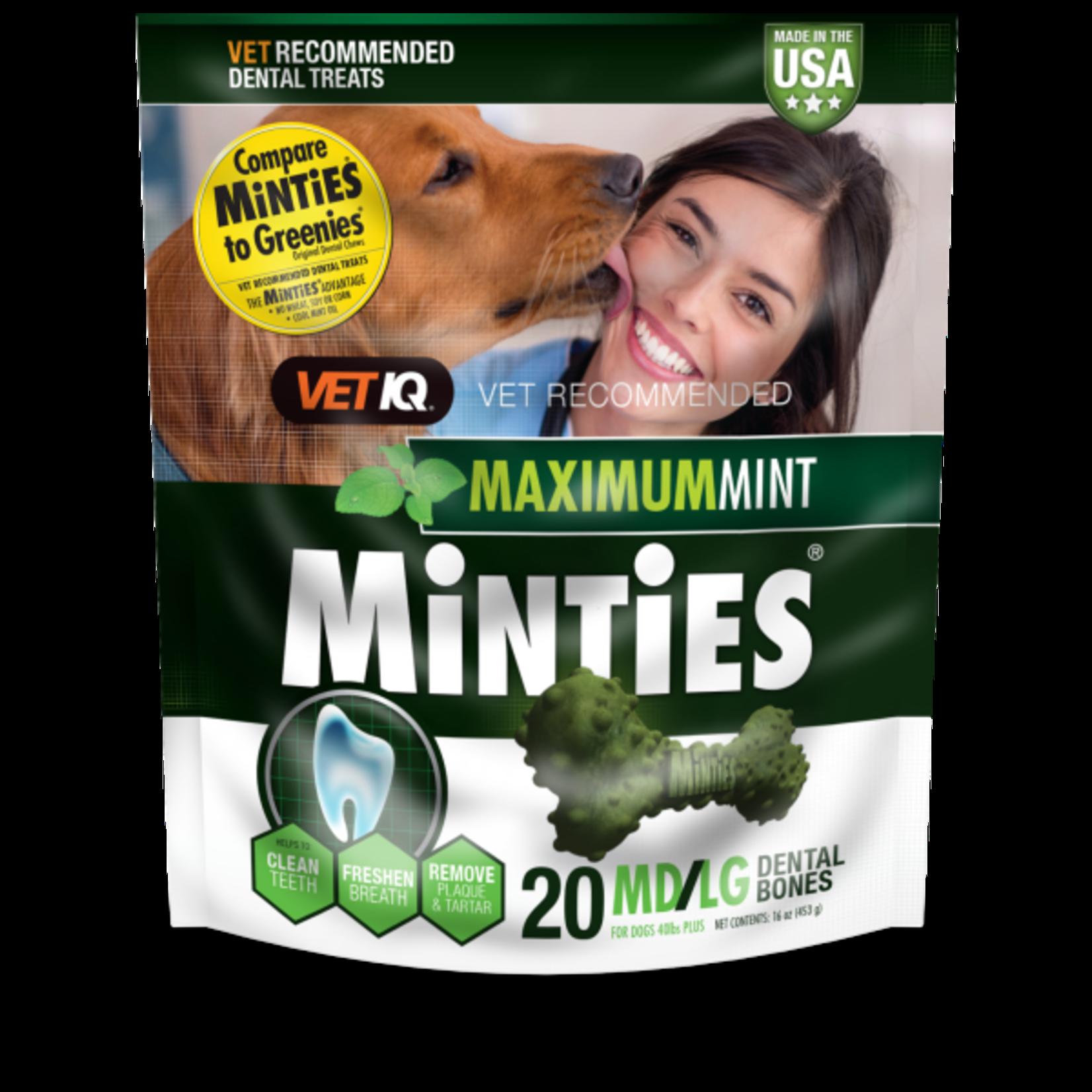 Minties Maximum Mint Dental Bones MD/LG 16oz 20ct