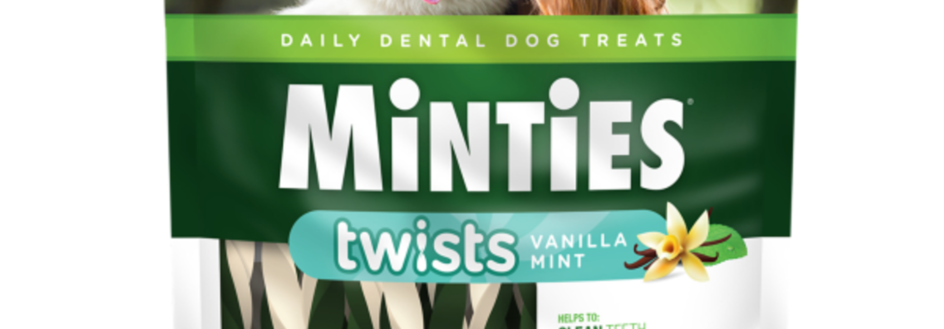 Dental Twists- Large 12oz