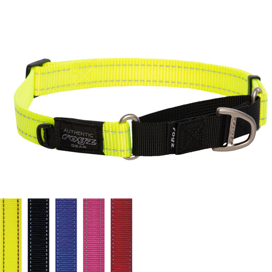 Control Collar Web Small Red-1