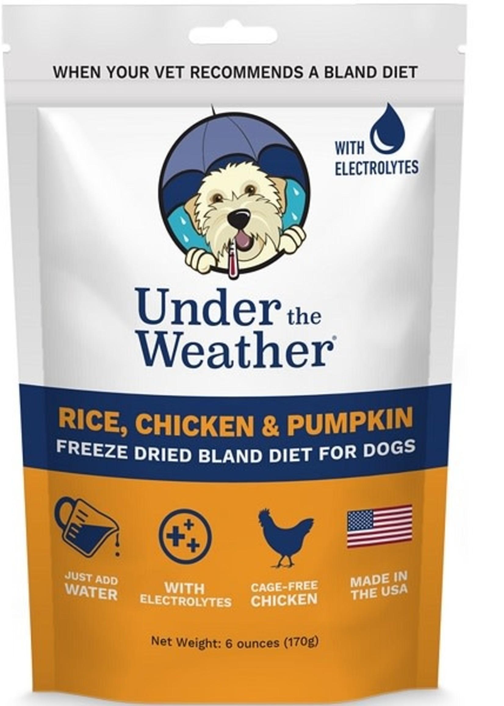 UTW Bland Diets Chicken & Rice/Pumpkin w/Electrolytes - 6oz