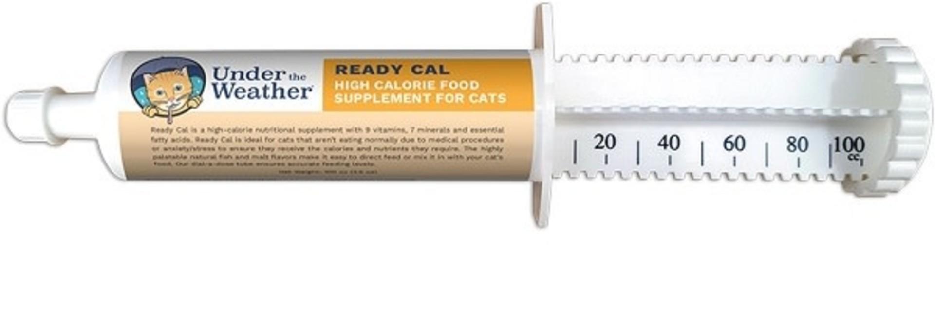 Ready Cal Cat Supplement - 80cc