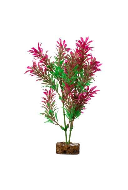 GloFish Plant, Med Pink/Green