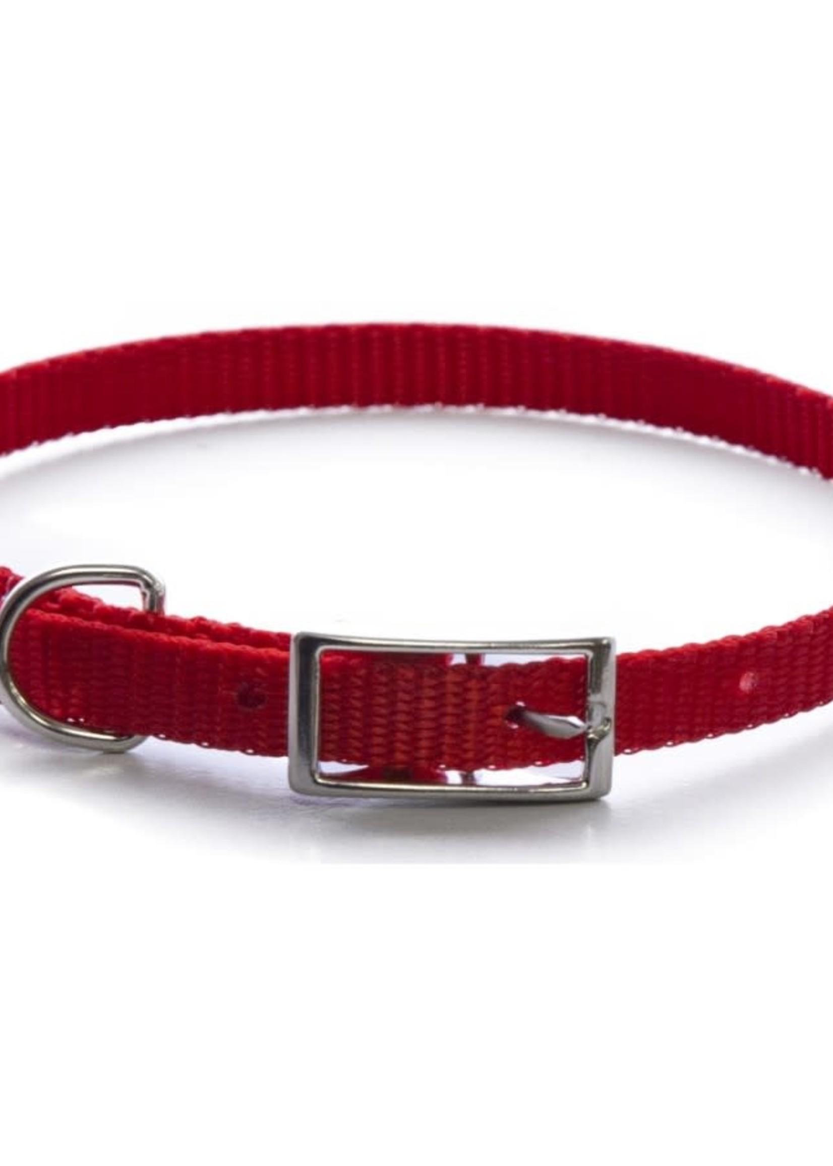 Burgham AK-9 Nylon AK-9 Single Layer Nylon Collar 3/8x10in - Neon Pink