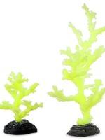 Sporn Aquatic Yellow Sinularia CORAL Large
