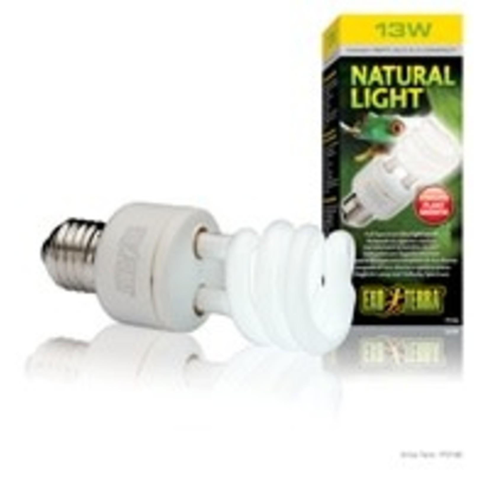 Exo Terra Natural Light Bulb