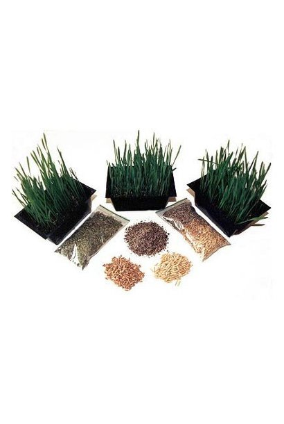 KK Grow Yer Own Cat Grass Kit