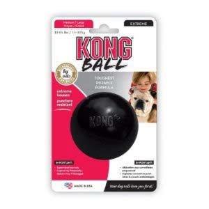 Kong Med-Lrg Extreme Ball-1