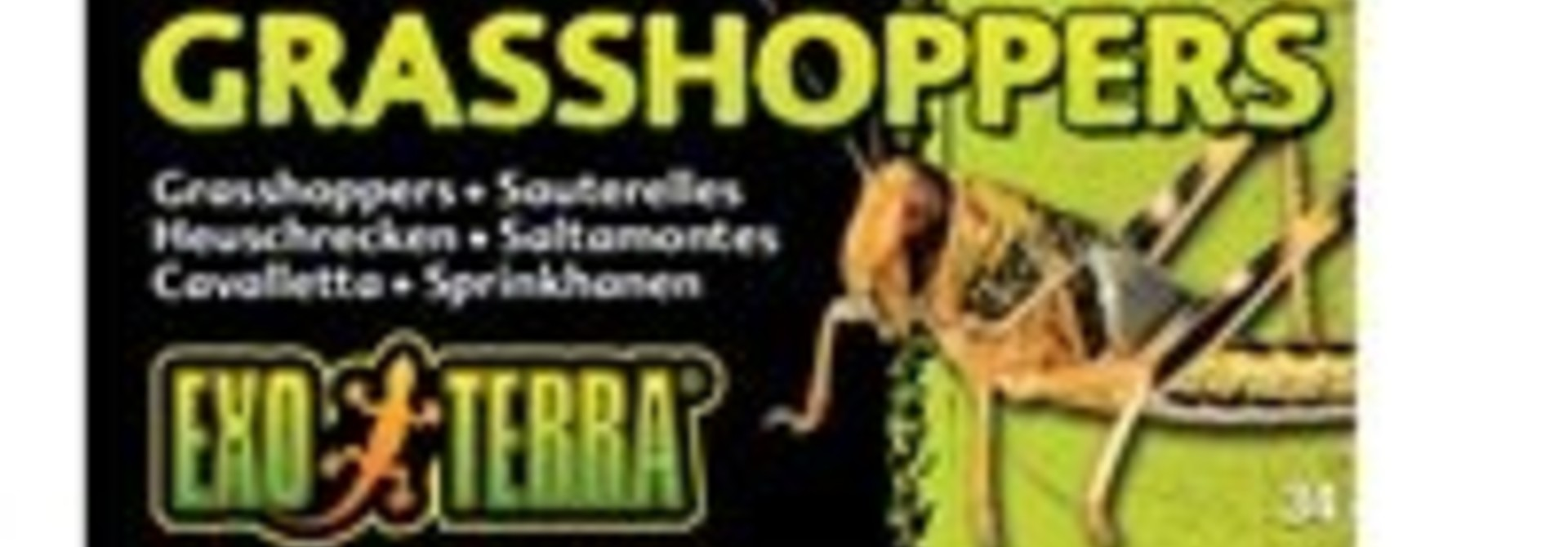 Exo Terra Canned Grasshoppers - 34 g (1.2 oz)