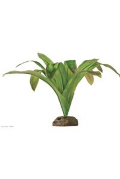 Exo Terra Dart Frog Bromelia Plant Large