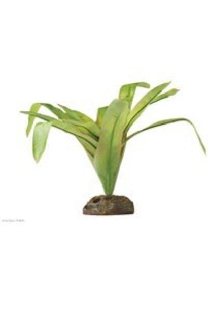 Exo Terra Dart Frog Bromelia Plant Medium