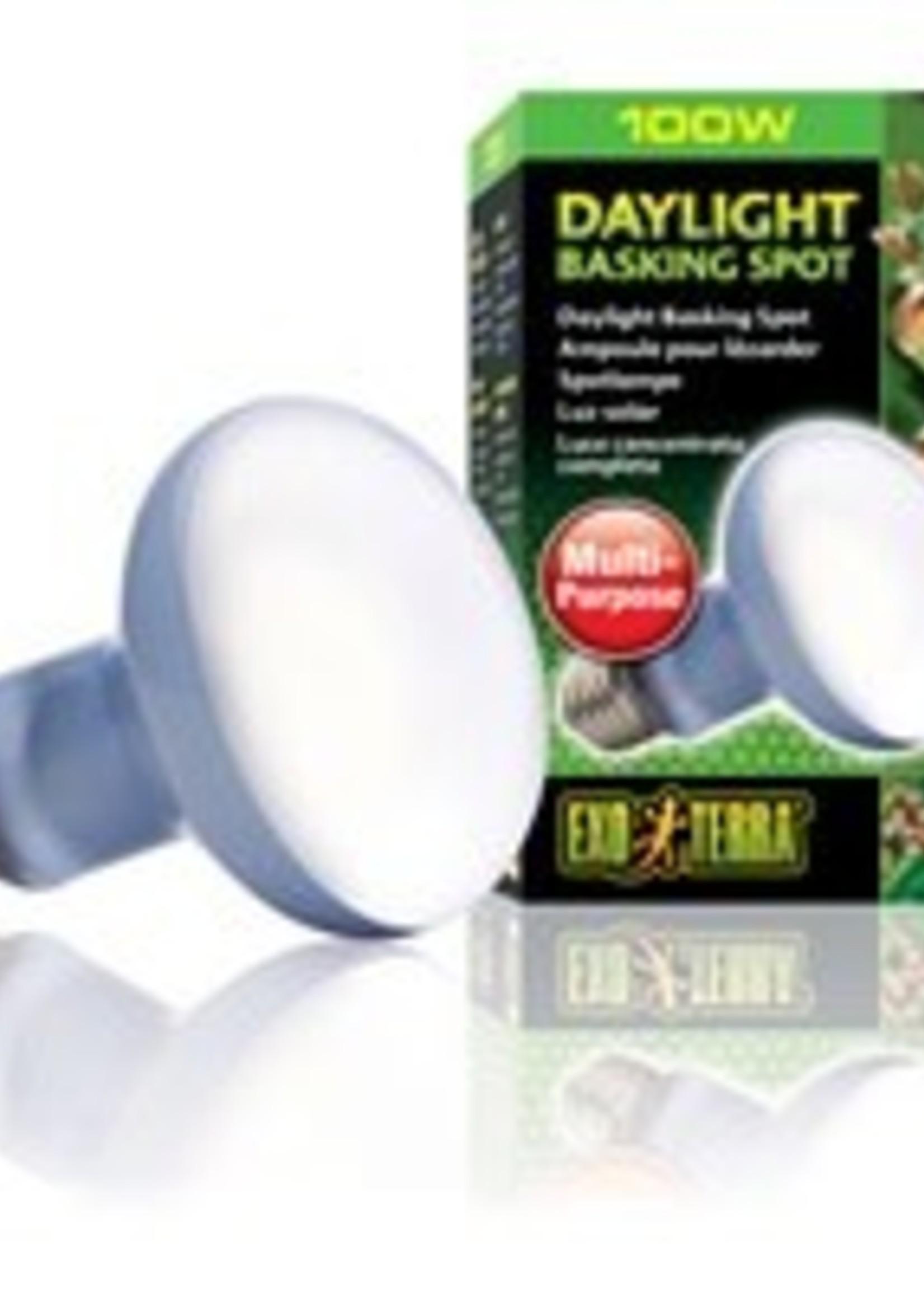 ET Daylight Basking Spot Lamp-R25/100W